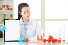 Looking clipboard to recording gmo food test result. In laboratory royalty free stock photos