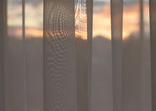 Looking Through Curtains Royalty Free Stock Photography