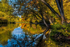 Looking down the Boise River in the Fall Stock Image