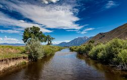 East fork of the carson river that runs through the valley and looking to the sierra mountains stock images
