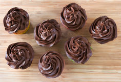 Looking down on chocolate cupcakes Stock Images