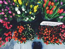 Looking down at colourful cut tulip bouquets for sale Royalty Free Stock Photography