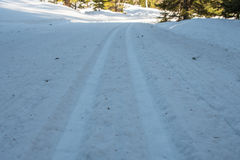 Looking Down Cross Country Skiing Tracks Royalty Free Stock Images