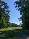 Looking down a fairway from a tee box. Stock Photography