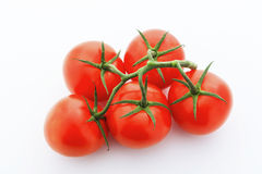 Looking down on five red tomatoes with vine against white background Royalty Free Stock Images