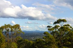 Looking down from Mt Coot tha near Brisbane Australia at suburbs and mountains in the background framed by tall gum trees. Looking down from Mt. Coot-tha near Stock Photos
