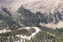 Looking down from near the summit of Pikes Peak at a hairpin curve near the treeline with tiny cars navigating it and tall pine fo. Rests with many dead trees stock photos