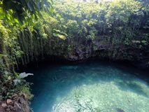 Looking down over the edge of To Sua Trench swimming hole, Upolu, Samoa, South Pacific island. Looking down over the edge of To Sua Trench swimming hole into the royalty free stock photos