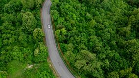 Looking down on road in forest of breathtaking stock video footage