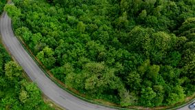 Looking down on road in forest of breathtaking stock video