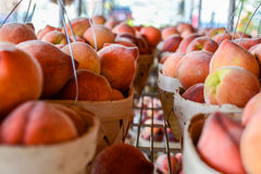 Looking down rows of peach baskets Stock Photo