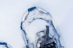 Looking down at snowshoes in fresh snow royalty free stock photo