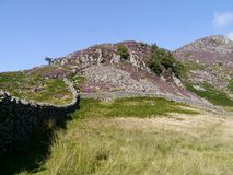 Looking down wall to heather covered mountains Stock Photos