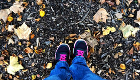 Looking Down at Your Feet in Leaves. Looking down at the photographers feet in running shoes and jeans, standing on mulch and fall leaves royalty free stock image