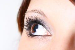 Looking dreams. Female eye close up with long eyelashes Stock Photos