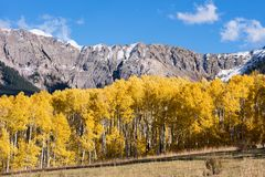 Looking east at the Mount Sneffels Range within the Uncompahgre National Forest, Colorado. The Sneffels Mountain Range in early Autumn viewed from the Last royalty free stock photos