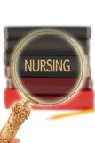 Looking in on education - Nursing Stock Photography