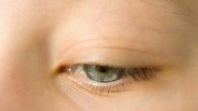 Looking eye macro stock video