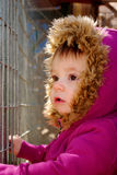 Looking Through the Gate. A young girl looking through a gate Royalty Free Stock Photos