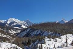Looking into Glacier National Park Stock Photos