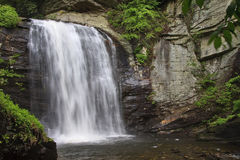 Looking Glass Falls in the Summer royalty free stock photo