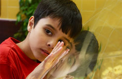 Looking Glass Gaze. Thoughtful little boy leaning on display glass with reflection of face and hand. Landscape in color Royalty Free Stock Photography