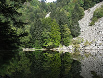 Looking-glass lake in the Vosges Royalty Free Stock Images
