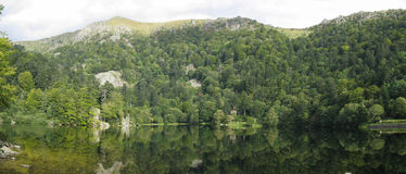 Looking-glass lake in the Vosges Stock Image