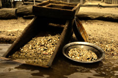 Looking for gold in river. Old heritage gold shaker and pan in the waters edge in sepia Royalty Free Stock Image