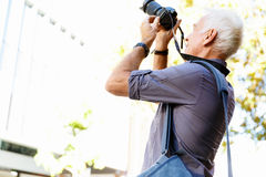 Looking for good shoots Royalty Free Stock Photography