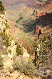 Looking into the Grand Canyon Royalty Free Stock Photography
