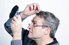 Looking for gray hair Royalty Free Stock Photo