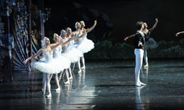 Looking for hope-ballet Swan Lake Royalty Free Stock Photos