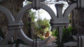 Looking at a secret garden SF stock video