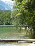 Looking at the Lake Bohinj Stock Photos