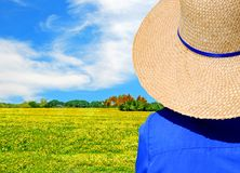 Looking at the Meadow. Woman in straw hat and bright blue shirt looking at colorful meadow in bloom Royalty Free Stock Images