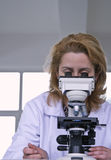 Looking through a microscope. Female researcher looking through a microscope in a laboratory Royalty Free Stock Photography