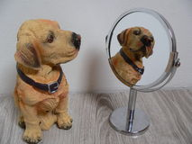 Looking in the mirror stock photos