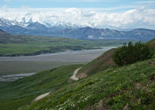 Looking at Mount McKinley Royalty Free Stock Photos