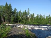 Looking nature of Karelia Stock Photography