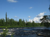 Looking nature of Karelia Royalty Free Stock Photo