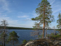 Looking nature of Karelia Royalty Free Stock Photos