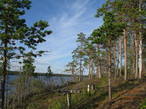 Looking nature of Karelia Royalty Free Stock Images