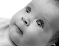 Looking newborn baby. Girl close-up portrait Stock Photos