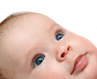 Looking newborn baby Royalty Free Stock Photo