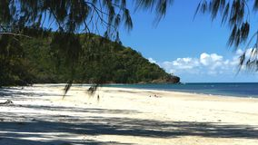 Looking north along myall beach at cape tribulation. In tropical north queensland, australia stock footage