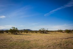 Looking out at a Desert Landscape royalty free stock images