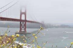 The Golden Gate Bridge royalty free stock photo