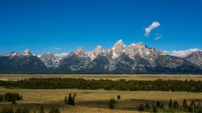 The Grand Teton looking out. Looking out the Grand Teton over meadow royalty free stock images