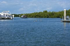 Looking out over bay with pelicans and boats in florida. Looking out over bay leading to the gulf of mexico in bonita springs, naples, Florida with boats, yachts royalty free stock photo